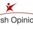 Irishopinions review